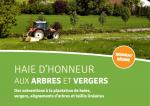 Subventions à la plantation : haie d'honneur aux arbres et vergers